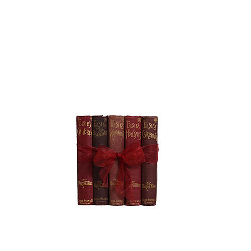 Antique Book Gift Set: Elsie's Life, S/5