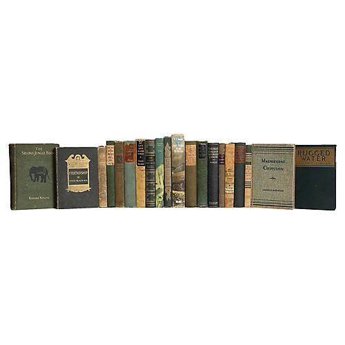 Vintage Wheat and Olive Book Set, (S/20)