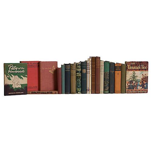 Vintage Wilderness Cabin Book Set, S/20