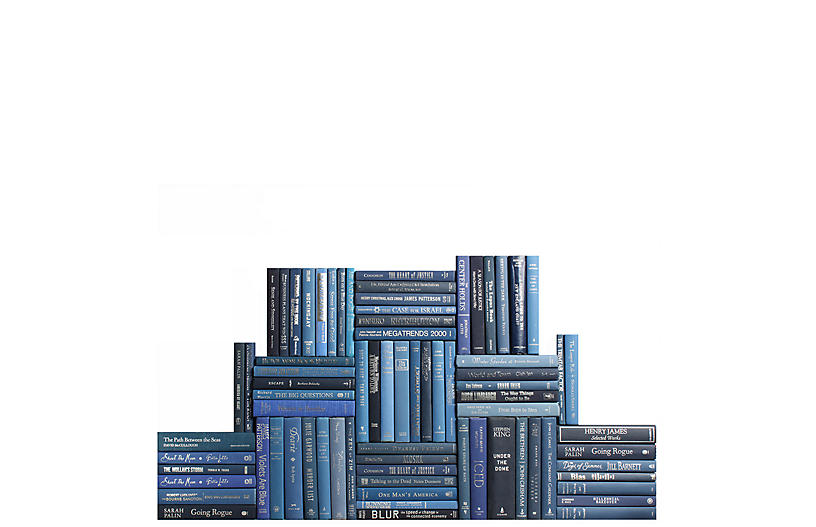 Modern Denim & Silver Book Wall, S/75