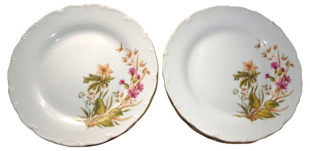 Czech Wildflower Dinner Plates, S/12