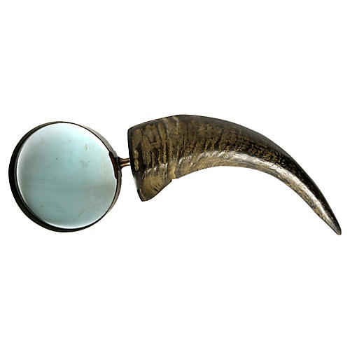 Large Horn Magnifier
