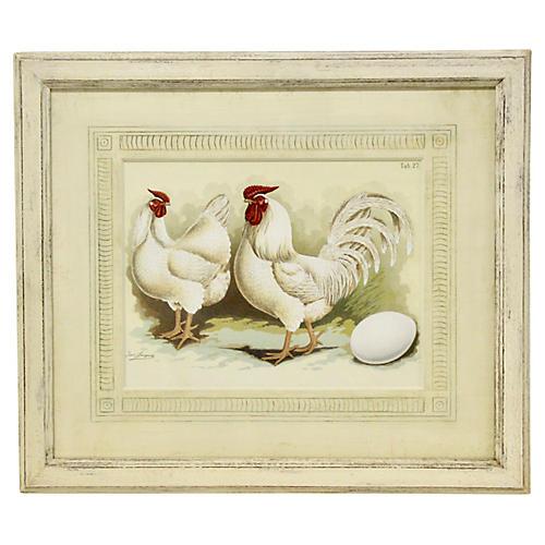 Antique German Chicken Print
