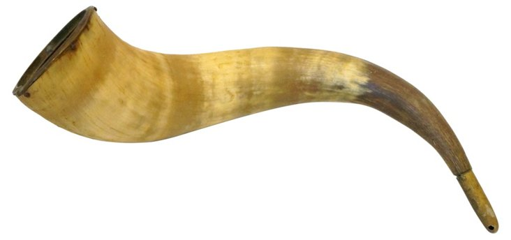 Horn w/ Brass Accents
