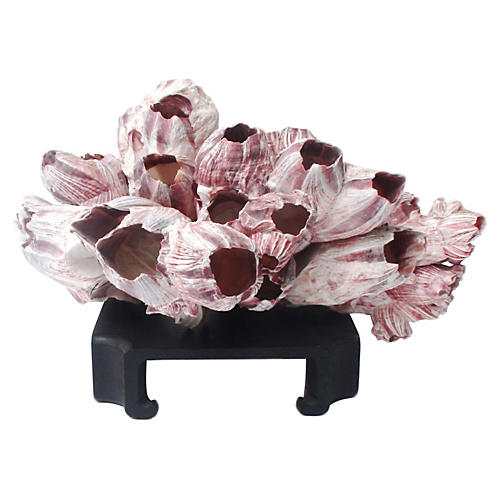 Mauve Barnacle Centerpiece w/ Stand