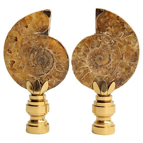 Ammonite Fossil Lamp Finals, Pair