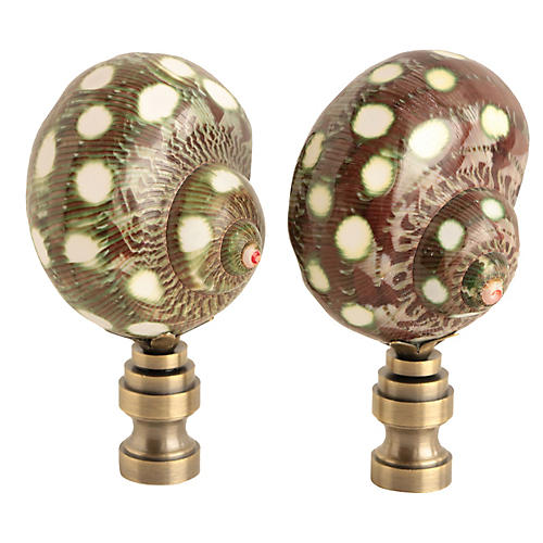 Spotted Shell Lamp Finials, Pair