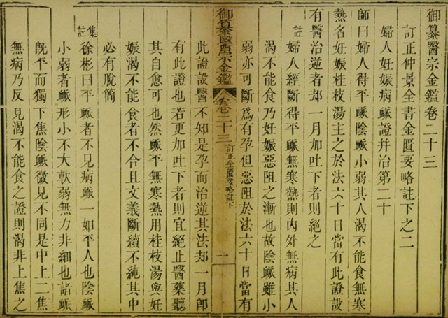 17th-C.  Chinese Medical Book Page