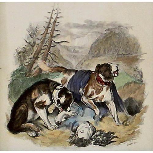 St. Bernards, 1843