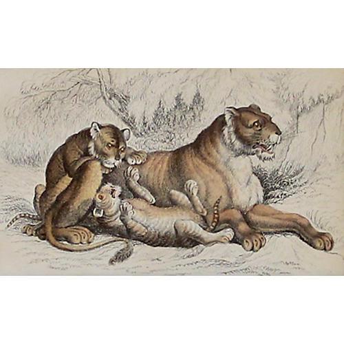 Lioness & Cubs, C. 1840