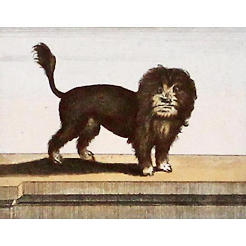 Lion Dog, C. 1800