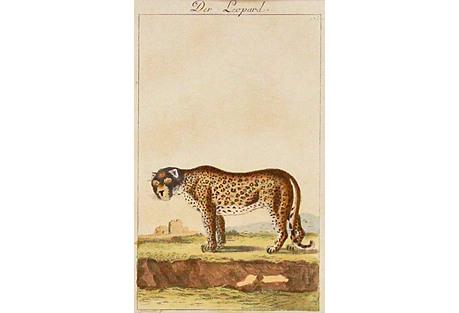 Leopard, 1780