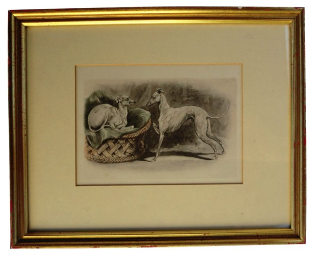 19th-C. Italian Greyhounds Etching
