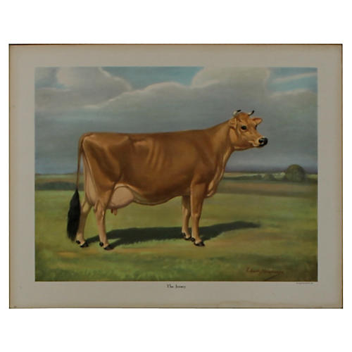 Jersey Cow Print