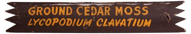 Ground Cedar Moss Sign