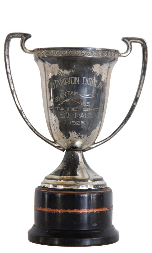 1922 Silver Champion Trophy Cup
