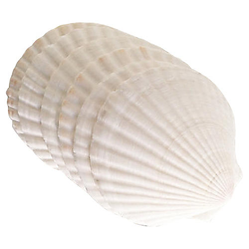 French Baking Shells, S/6