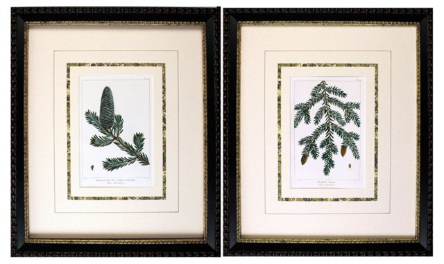 Pine Tree Botanicals, Pair, 1865