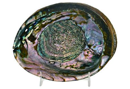 Purple & Pink Abalone Shell