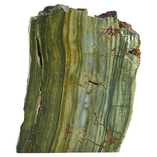 Moss Green Petrified Bog Wood Wedge