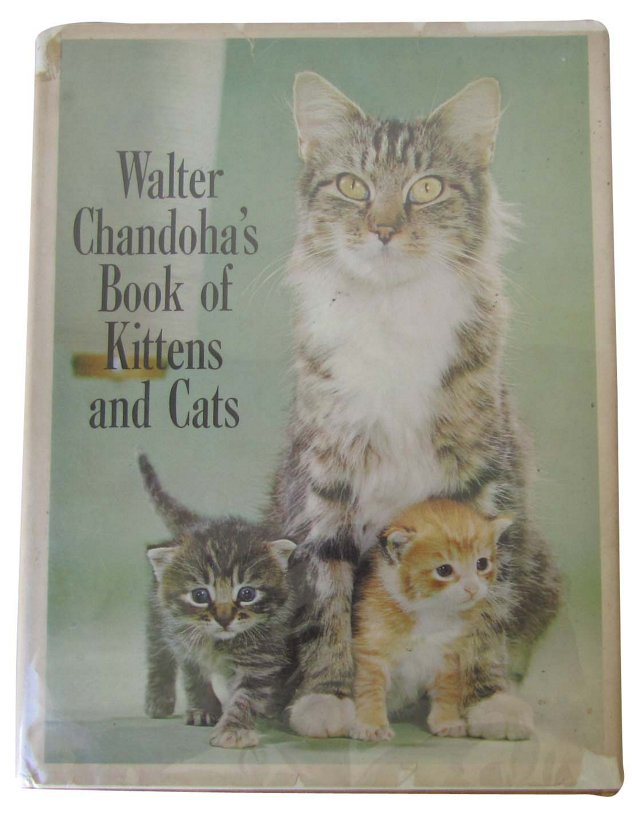W. Chandoha's Book of Kittens & Cats