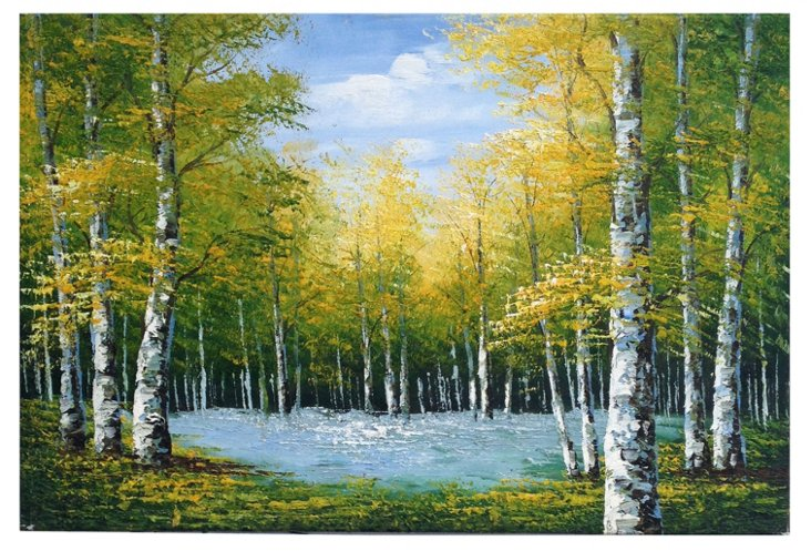 Birch Trees Overlooking a Pond