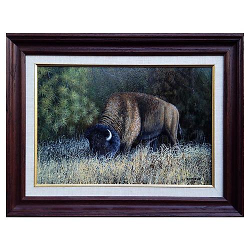 Buffalo by Ron Holyfield