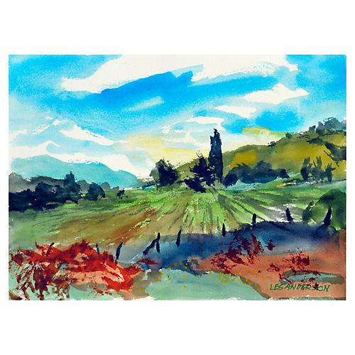 Carmel Valley Hills