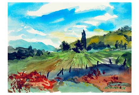 Carmel Valley Hills