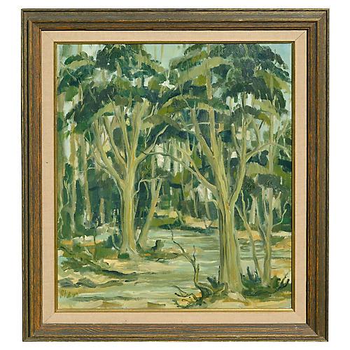 Midcentury California Eucalyptus Grove