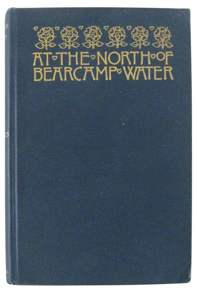 At the North of Bearcamp Water
