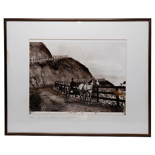 1905 Framed Black & White Photograph