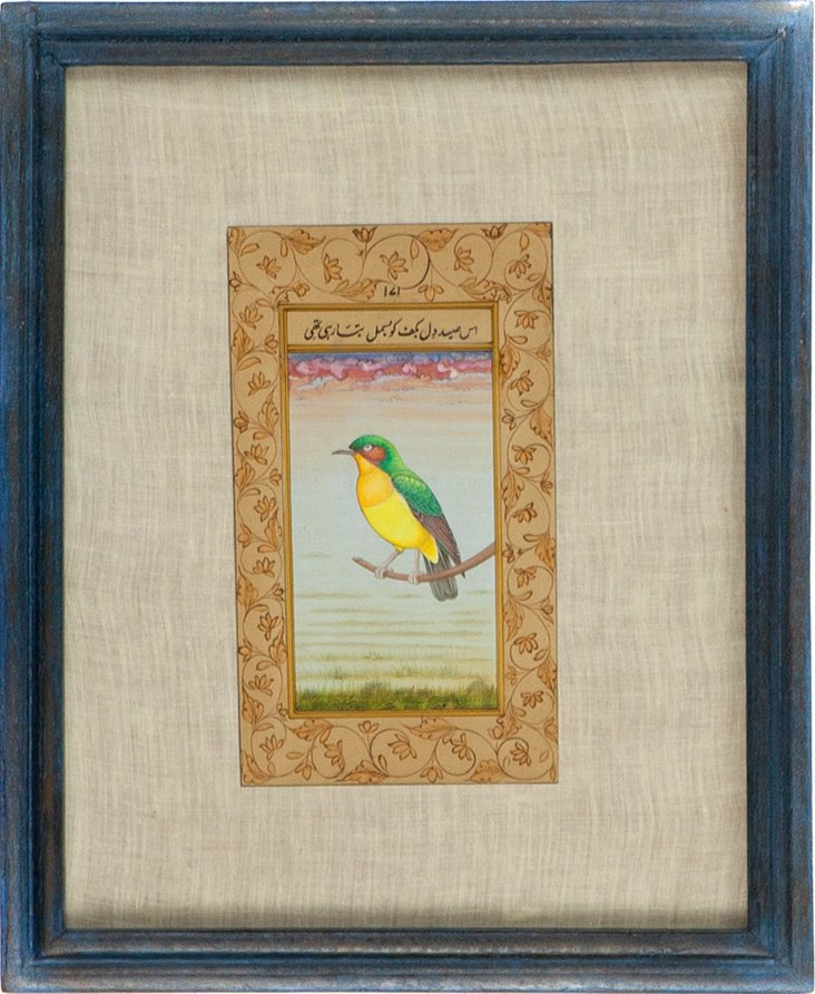 Green & Yellow Bird on Manuscript