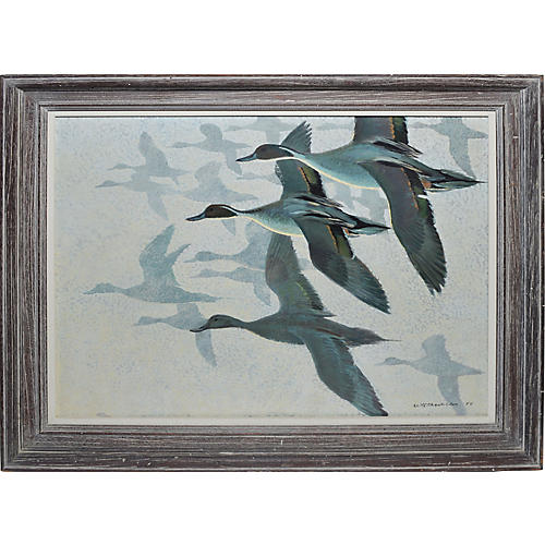 Birds in Flight by Keith Hope Shackleton