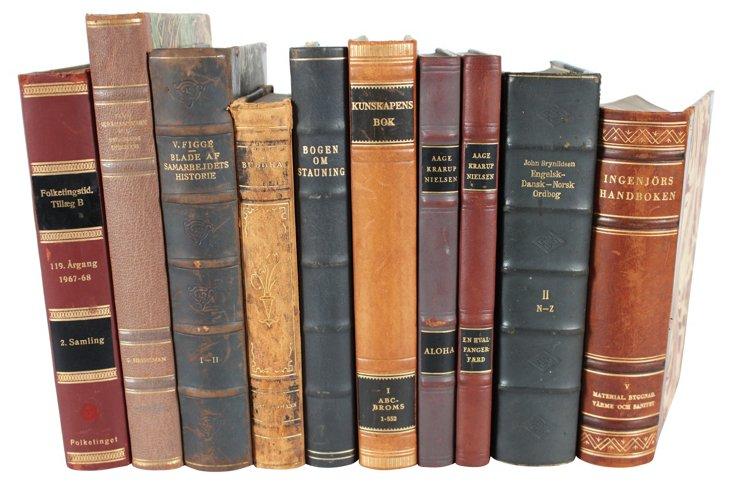 Decorative           Leather Books, S/10