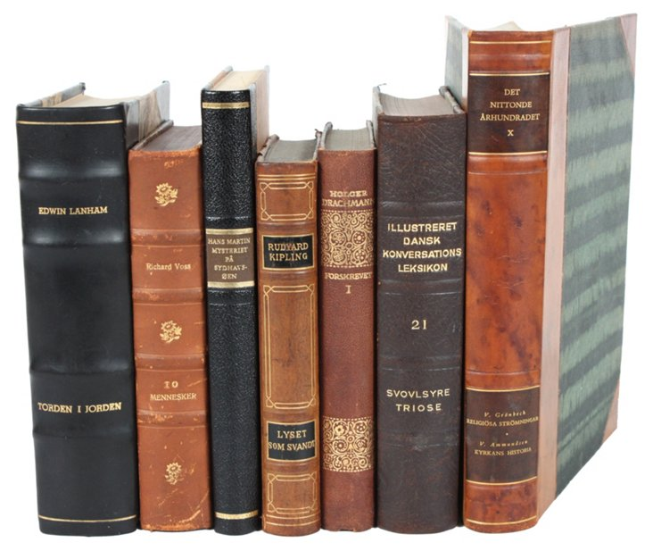 Decorative       Leather Books, S/7
