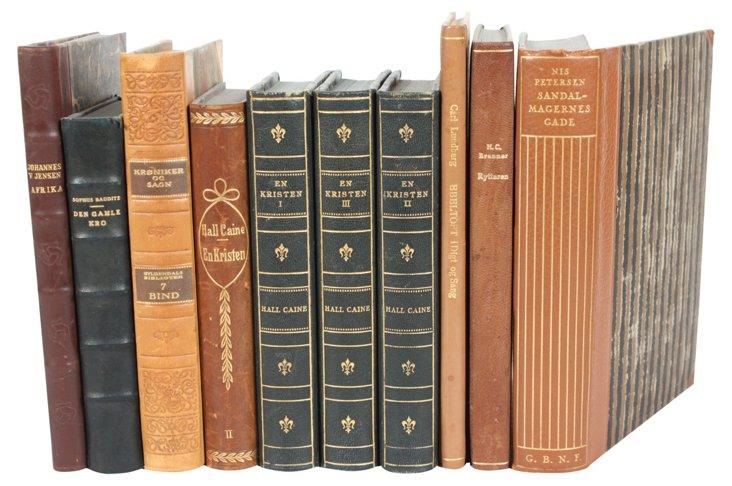 Scandinavian Leather-Bound Books, S/10