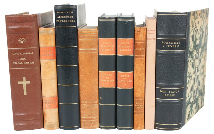 Decorative Leather-Bound Books, S/9