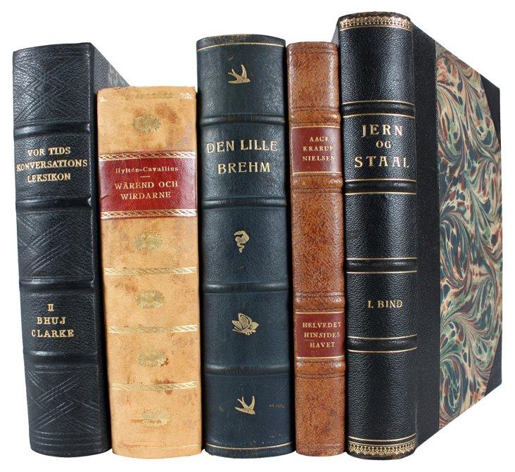 Decorative Leatherbound Books VIII, S/5