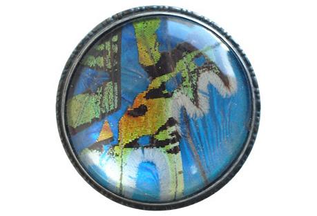 Edwardian Sterling & Butterfly Wing Pin