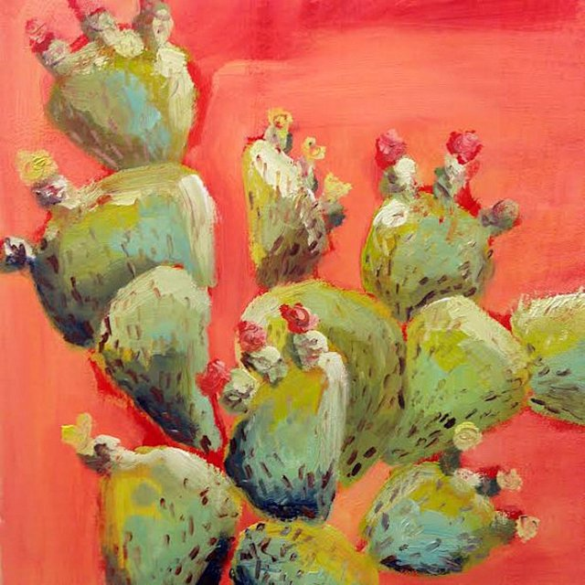 Flowering Cacti, Santa Fe