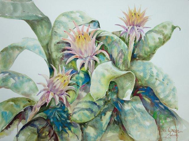 Succulents by Elsie Grace