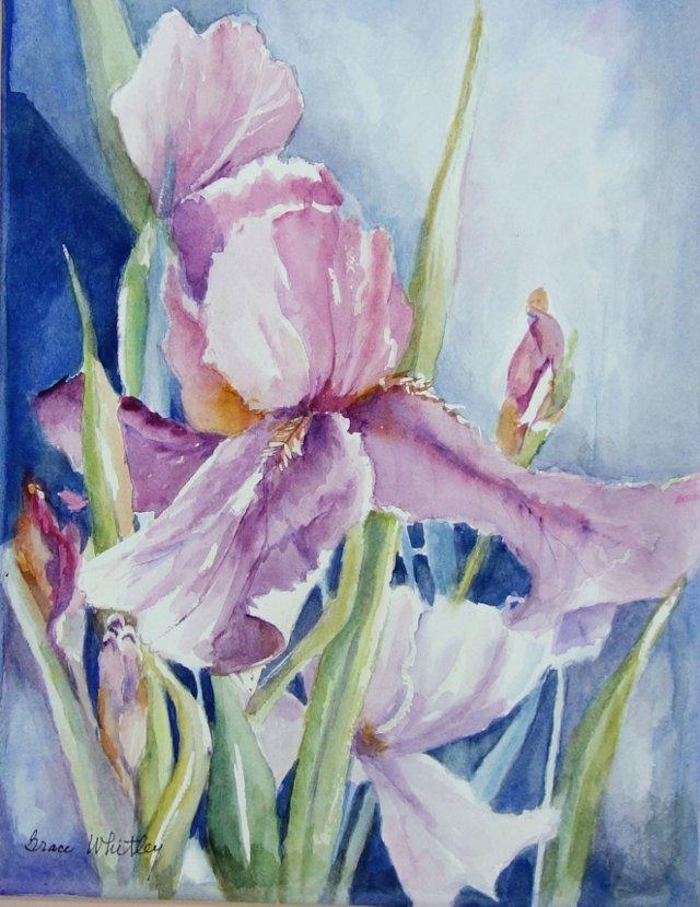 Purple Irises by Grace Whitley