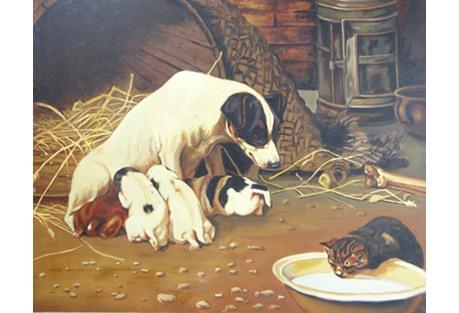 Dog Eying Kitten In Milk