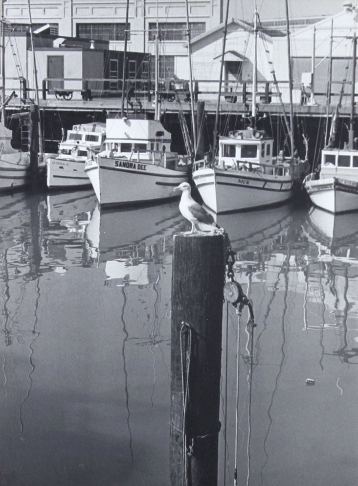 Fisherman's Warf, 1970