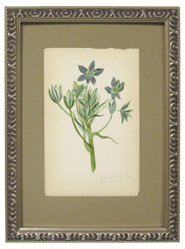 Green Wildflowers Watercolor, 1883