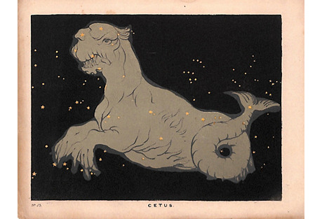 Constellation Cetus Print, 1845