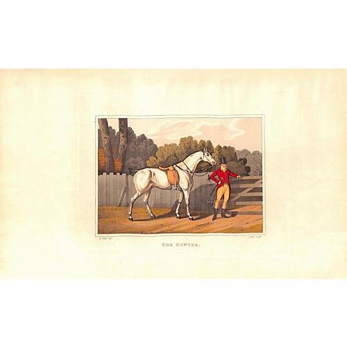 Horse & Rider, 1903
