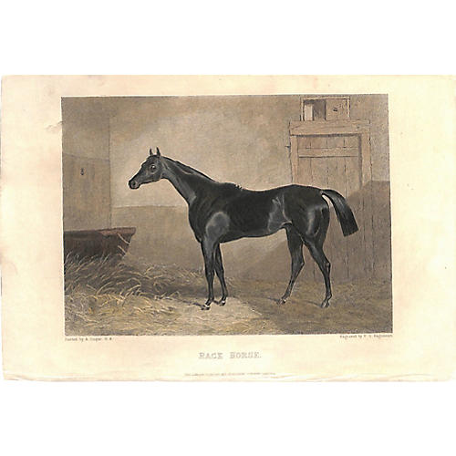 Black Race Horse, 1868