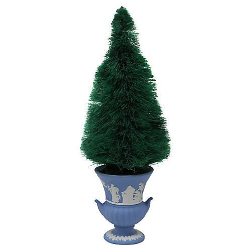 Bottle Brush Tree in Wedgwood Pot